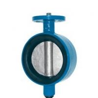 Затвор дисковый межфланцевый без привода - Модель 102