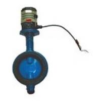 Затвор дисковый межфланцевый с электроприводом - Модель 107